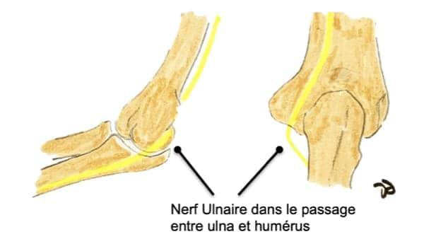 compression du nerf ulnaire au coude compression nerf cubital douleur epaule coude epaule chirurgien orthopedique paris chirurgien de l epaule chirurgien du coude
